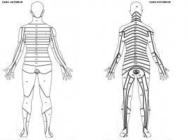 El dibujo sensitivo y expresivo de la figura humana cfnm - 4 1